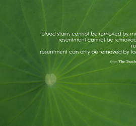 Buddha On Resentment