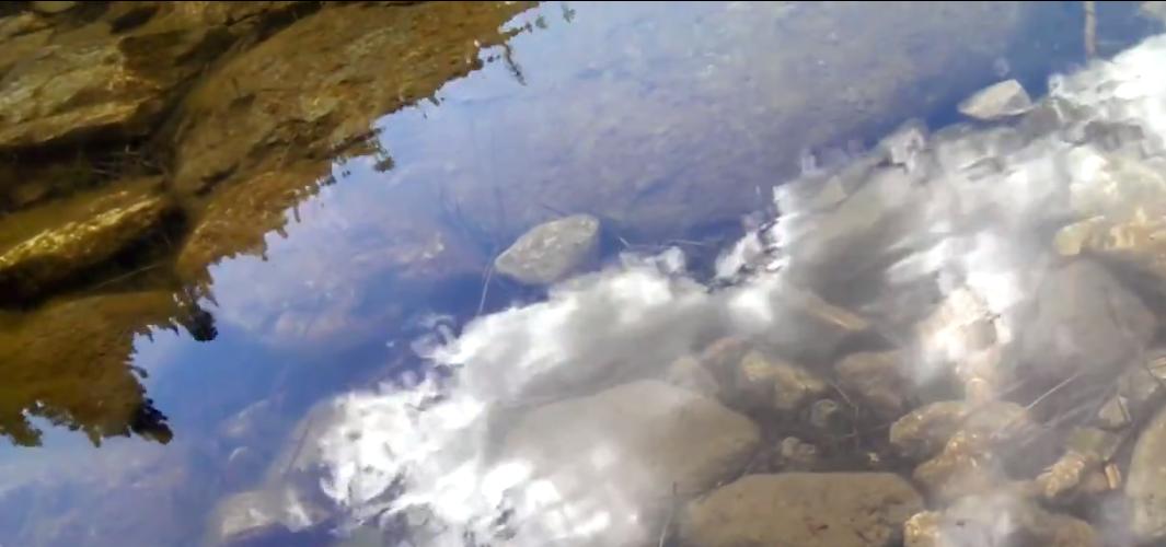 Sardine Lake