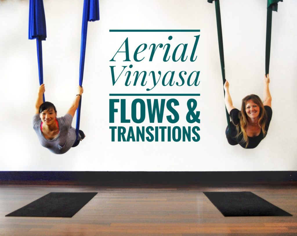 Aerial Vinyasa: Flows & Transitions