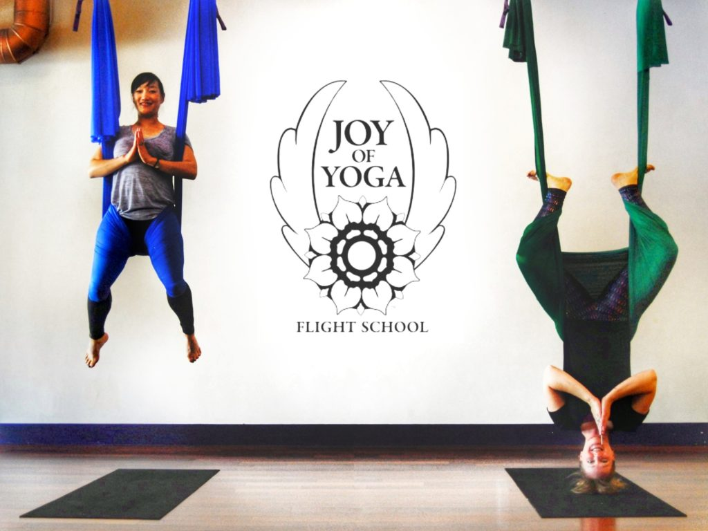 Joy of Yoga™ Flight School Aerial Yoga Teacher Training