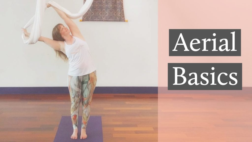 Aerial Basics Yoga Workshop