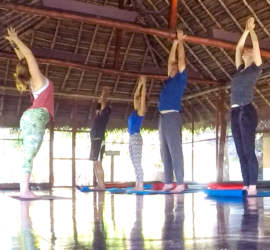 Yoga Teacher Training | Om Fairy School of Yoga