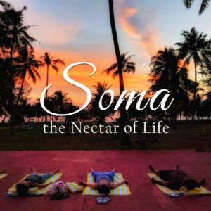 Soma :: The Nectar of Life | A 50-hour YTT Immersion