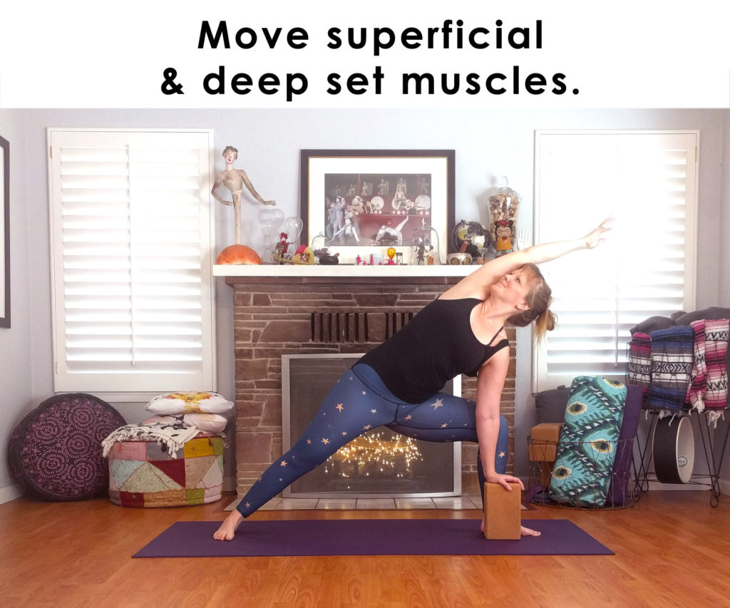 Move superficial and deep set muscles.